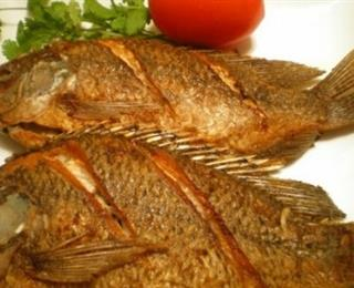 السمك المقلي البلطي